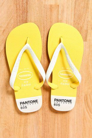 208196_0004_1-HAVAIANAS-PANTONE