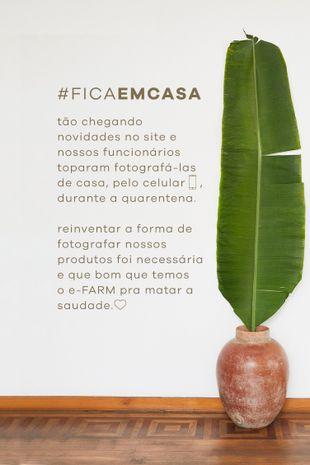 288629_3123_2-MACACAO-CLOCHARD-ACROBATICAS-S